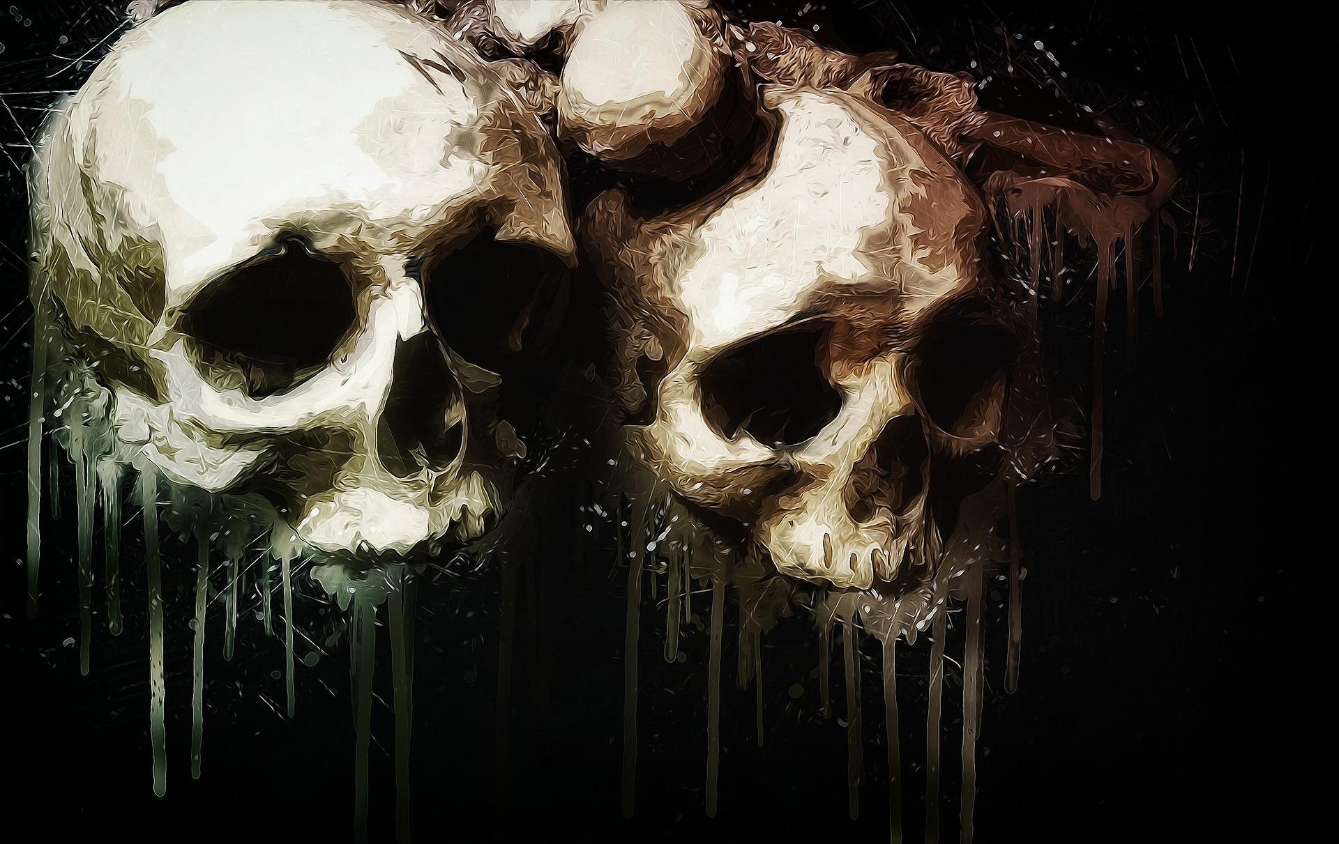 骸骨 骨 2つ