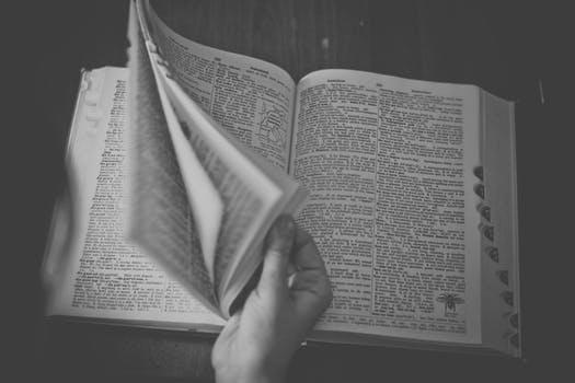 【お役立ち】プロダクトローンチ辞典、お探しですか?